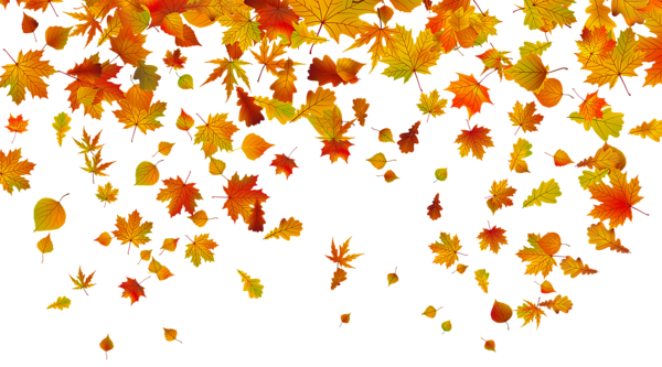 vector library stock Fall background clipart. Transparent leaves png image