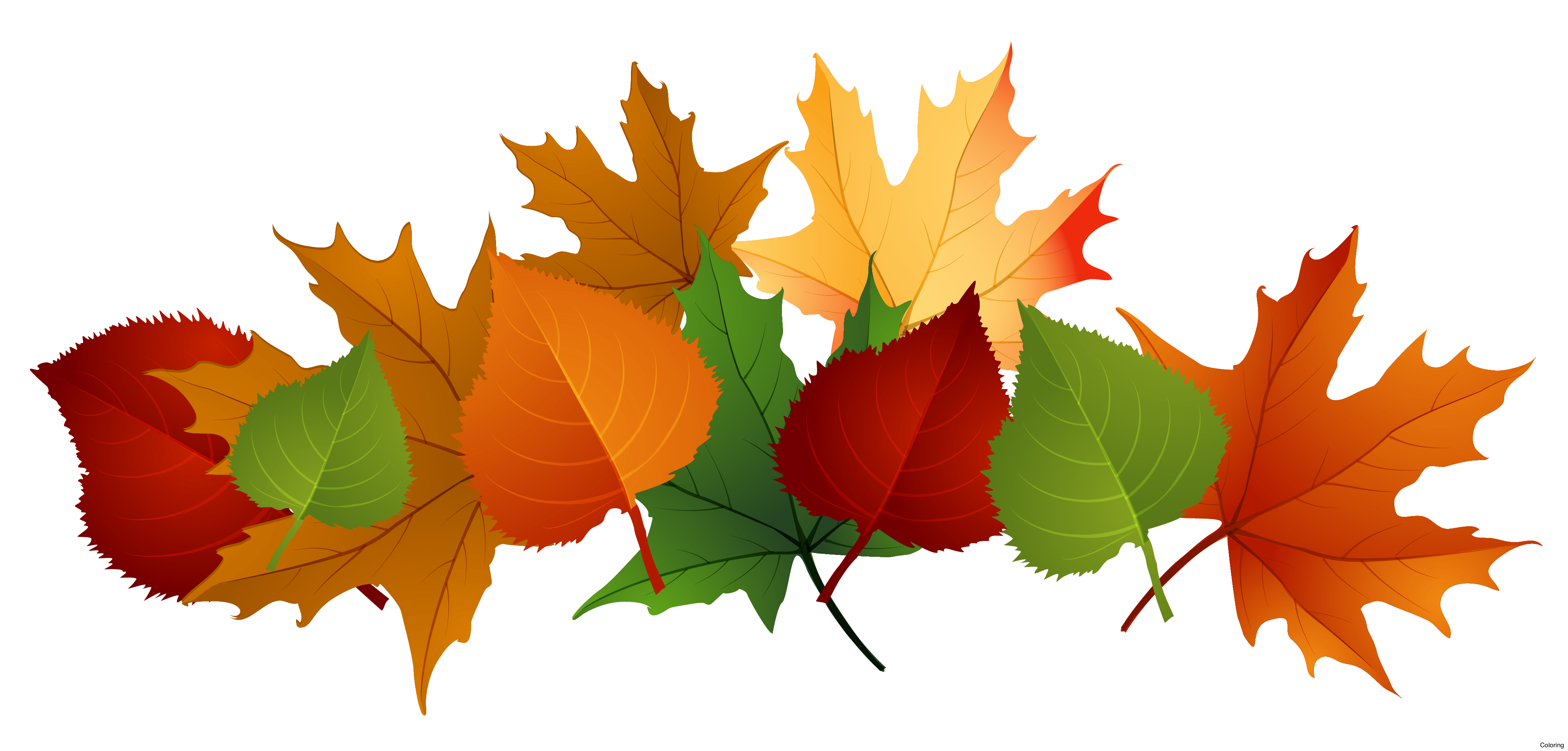 free Leaf free on dumielauxepices. Fall clipart.