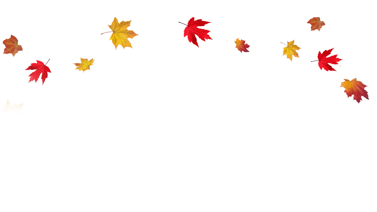 clip art freeuse Fall transparent. Leaves clipart cilpart glamorous
