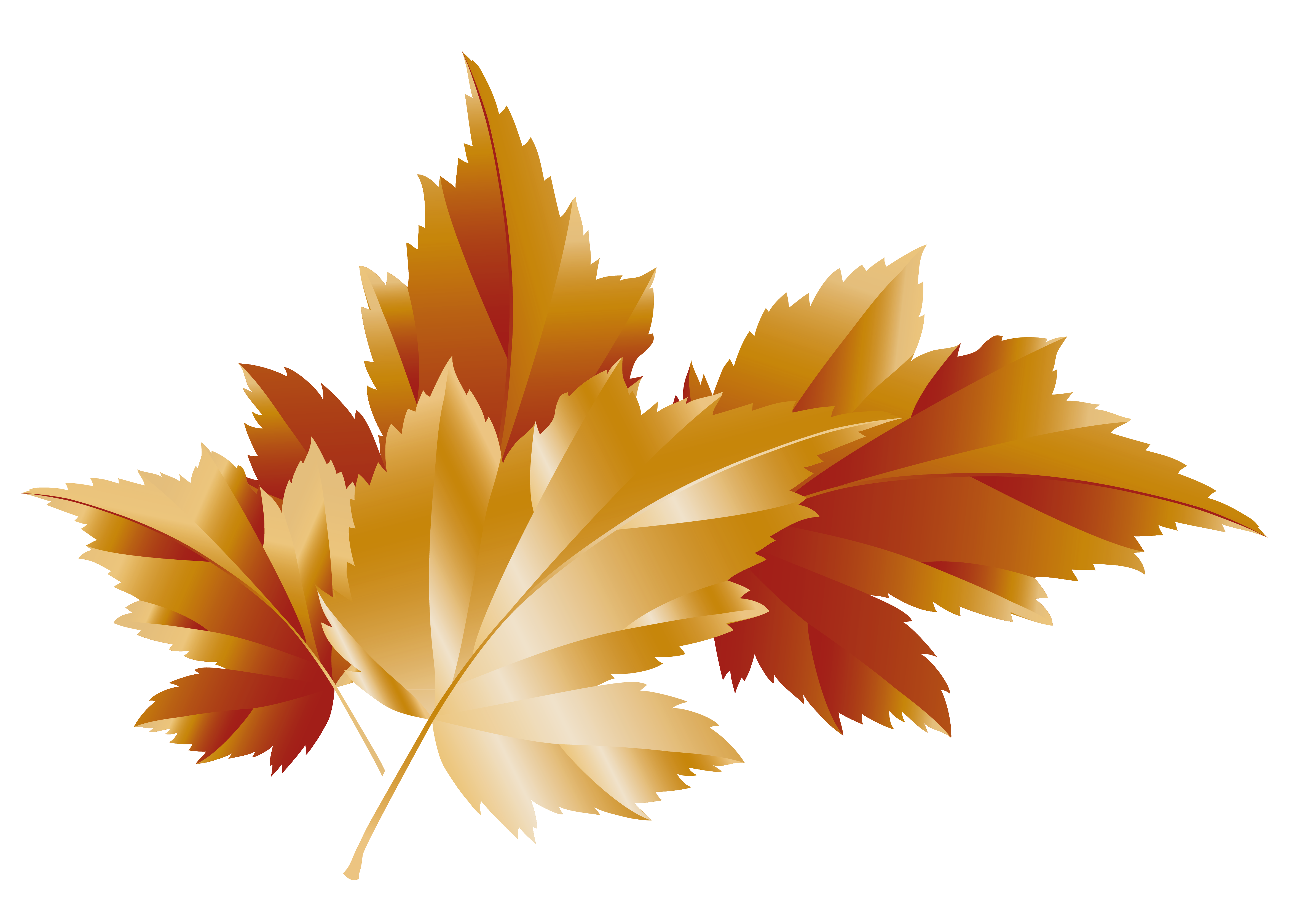 clip art library Leaves decor picture gallery. Fall transparent