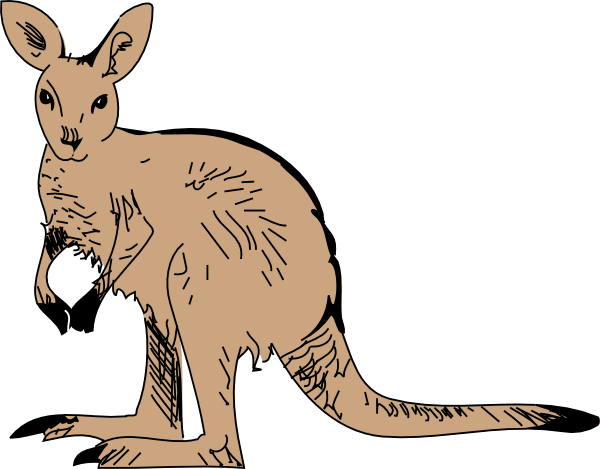royalty free stock Zoo animal clipart. Standing kangaroo clip art