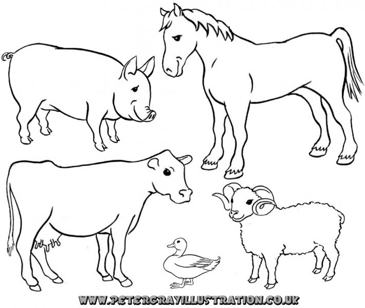 picture royalty free stock Farm animal clipart black and white. Look at clip art