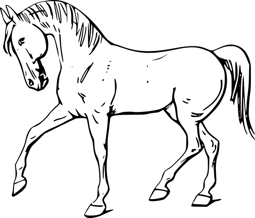 picture free library Png animals transparent horse. Farm animal clipart black and white