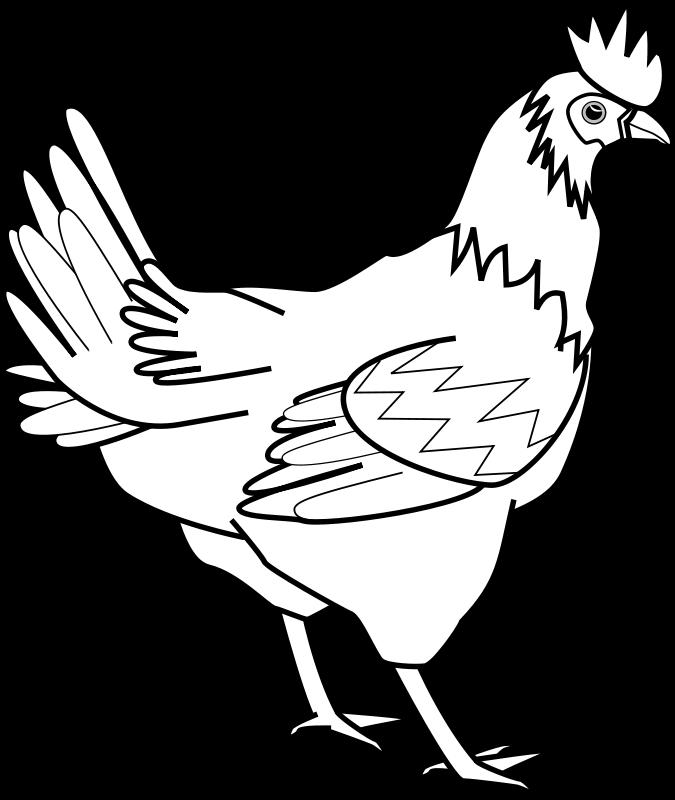 banner free stock Wild turkey clipart black and white. Farm animals animal free