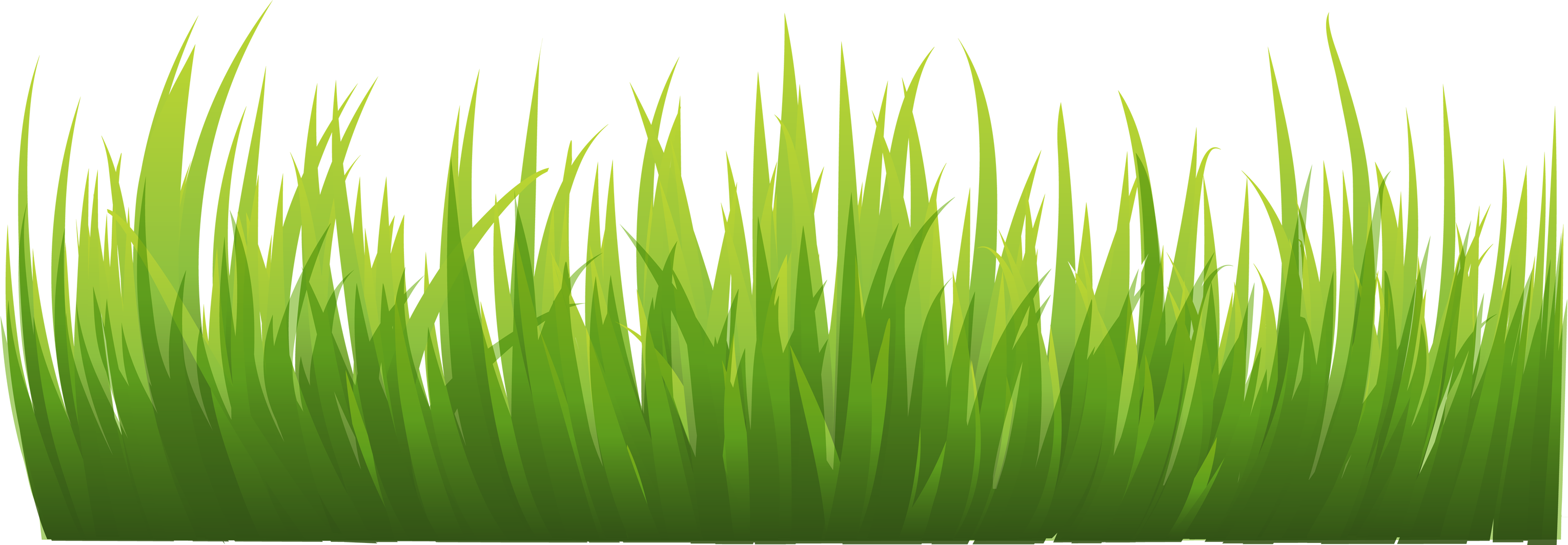 png transparent stock Lawn care clipart realistic grass. Png images pictures image.