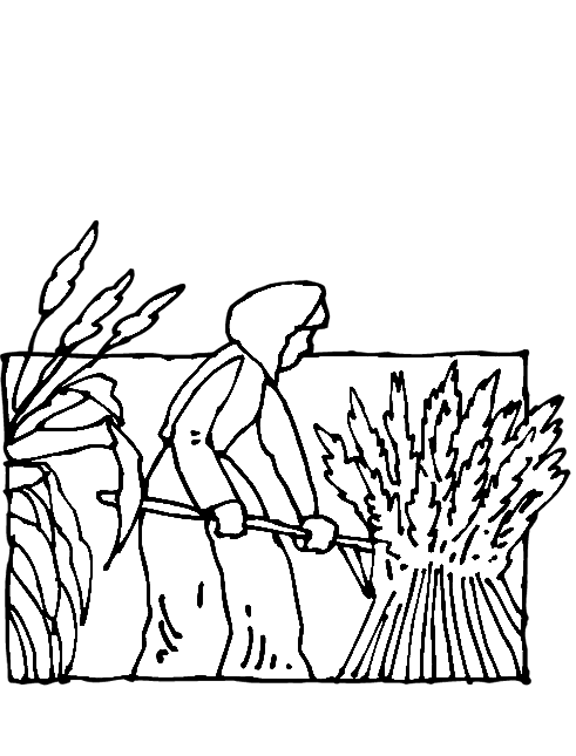 clipart library stock Farm Field Drawing at GetDrawings