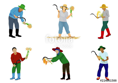 clip art free stock farmer harvest rice cartoon shape vector design