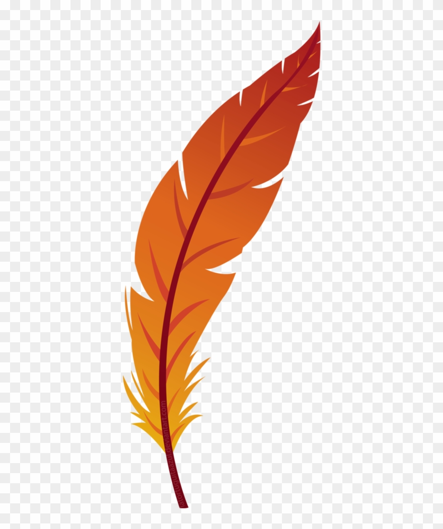 png library library Feather clipart. Orange transparent