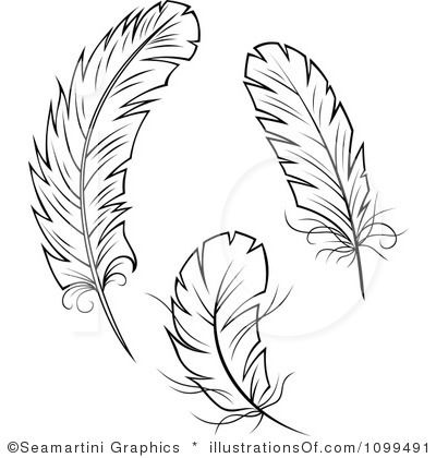 banner transparent library Feather outline clip art. Feathers clipart.