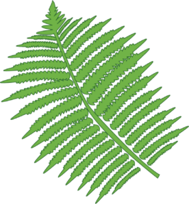 graphic black and white library Free cliparts download clip. Fern clipart.