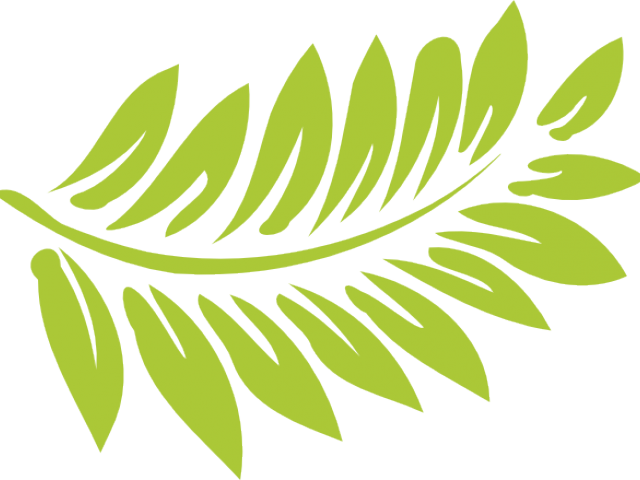 picture freeuse download Free on dumielauxepices net. Fern clipart.