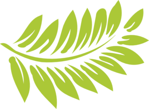 transparent stock Fern Clip Art at Clker