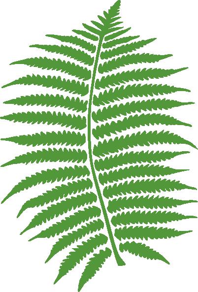 image black and white fern transparent animated #112804388