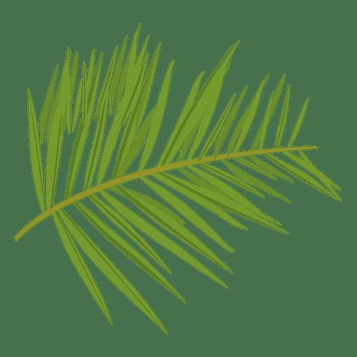 jpg transparent download Green fern