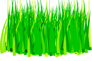 graphic royalty free download Land clipart crop field. Paddy free on dumielauxepices.