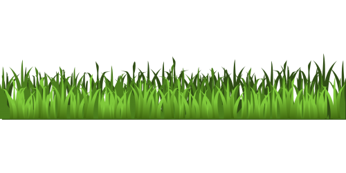 png black and white library Meadow Green Grass Clipart