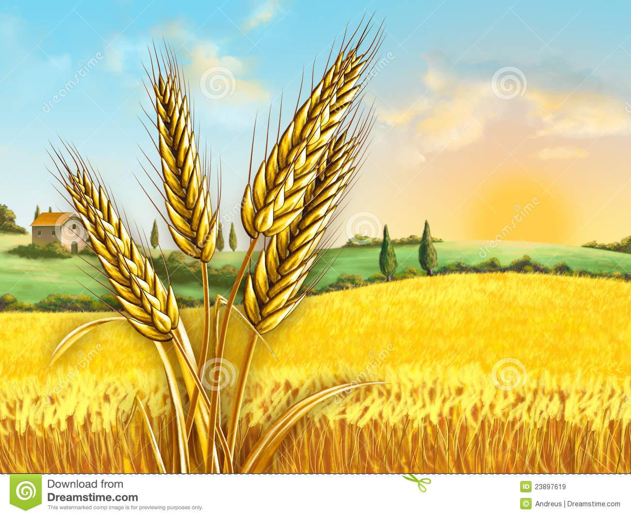 clip free Portal . Field of wheat clipart