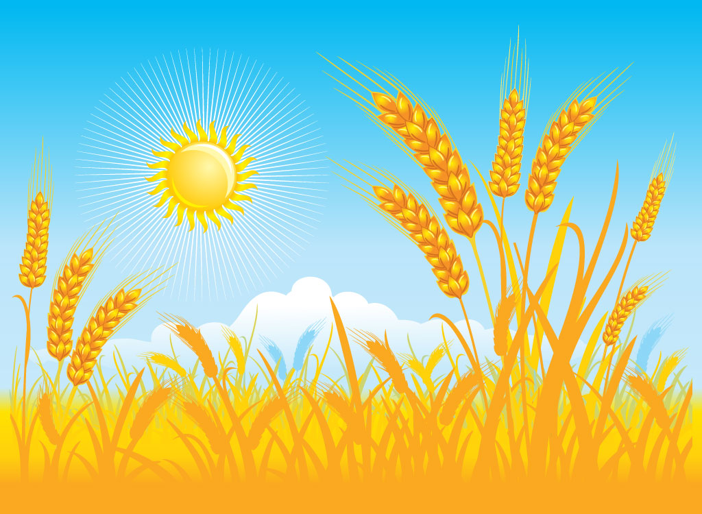 clip black and white download Field of wheat clipart. Png portal