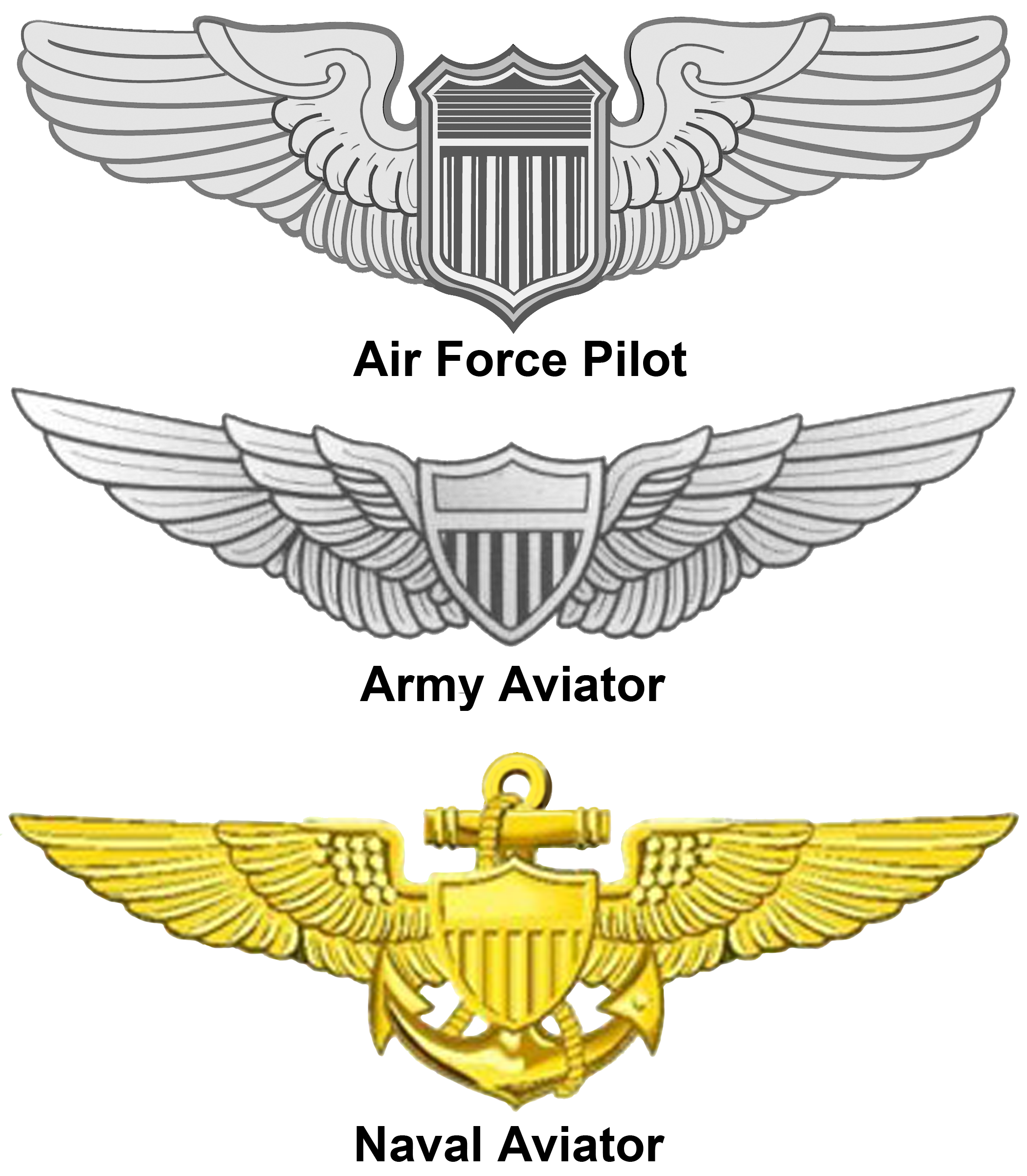 vector library download United states aviator badge. Vector emblem vintage military