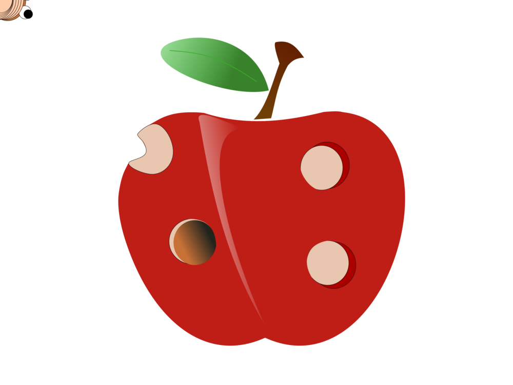 image freeuse download Film computer icons animation. Drawing strawberries animated