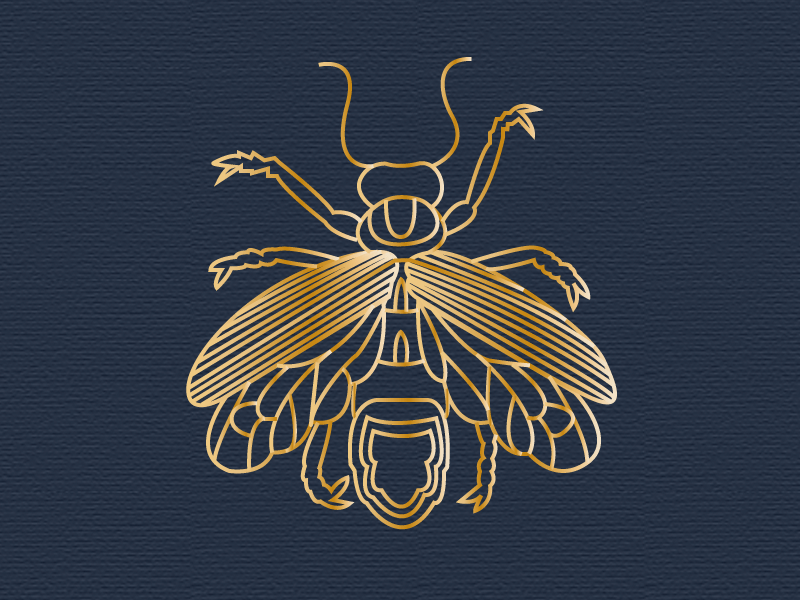 jpg royalty free By cecilia clamart on. Firefly vector