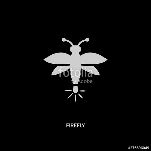 clip art royalty free Firefly vector. White icon on black