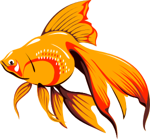 banner free library Golden clip art at. Goldfish clipart 4 fish