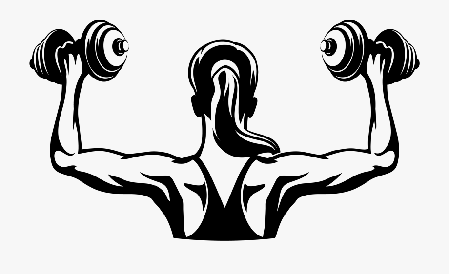 image freeuse library Women dumb bell png. Fitness clipart