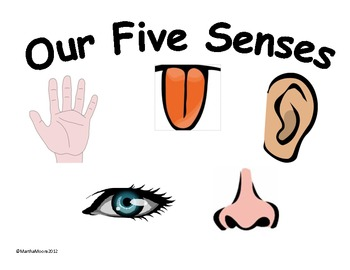 graphic free download Five senses clipart. Free cliparts download clip.