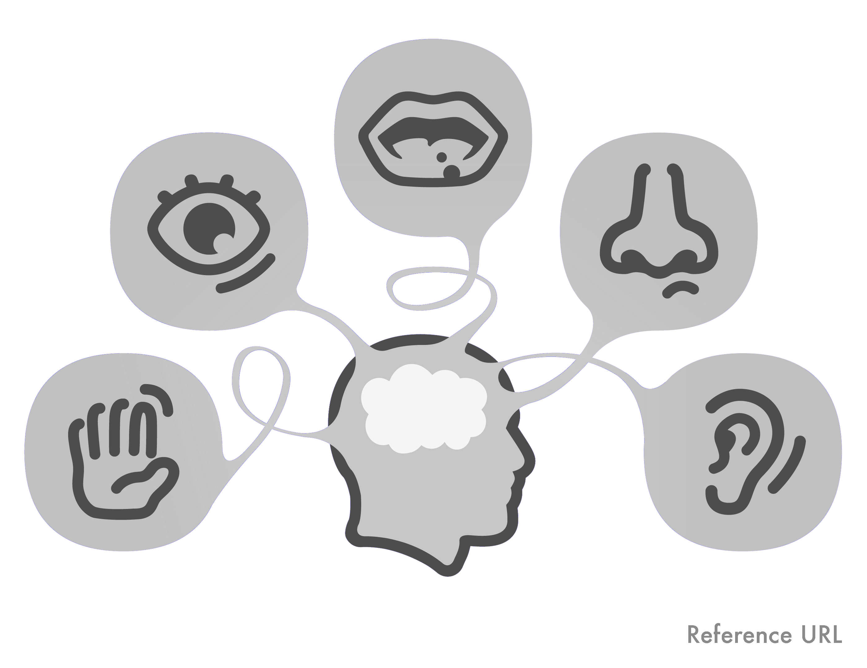 image free download Five senses clipart tactile learning. The a primer sight