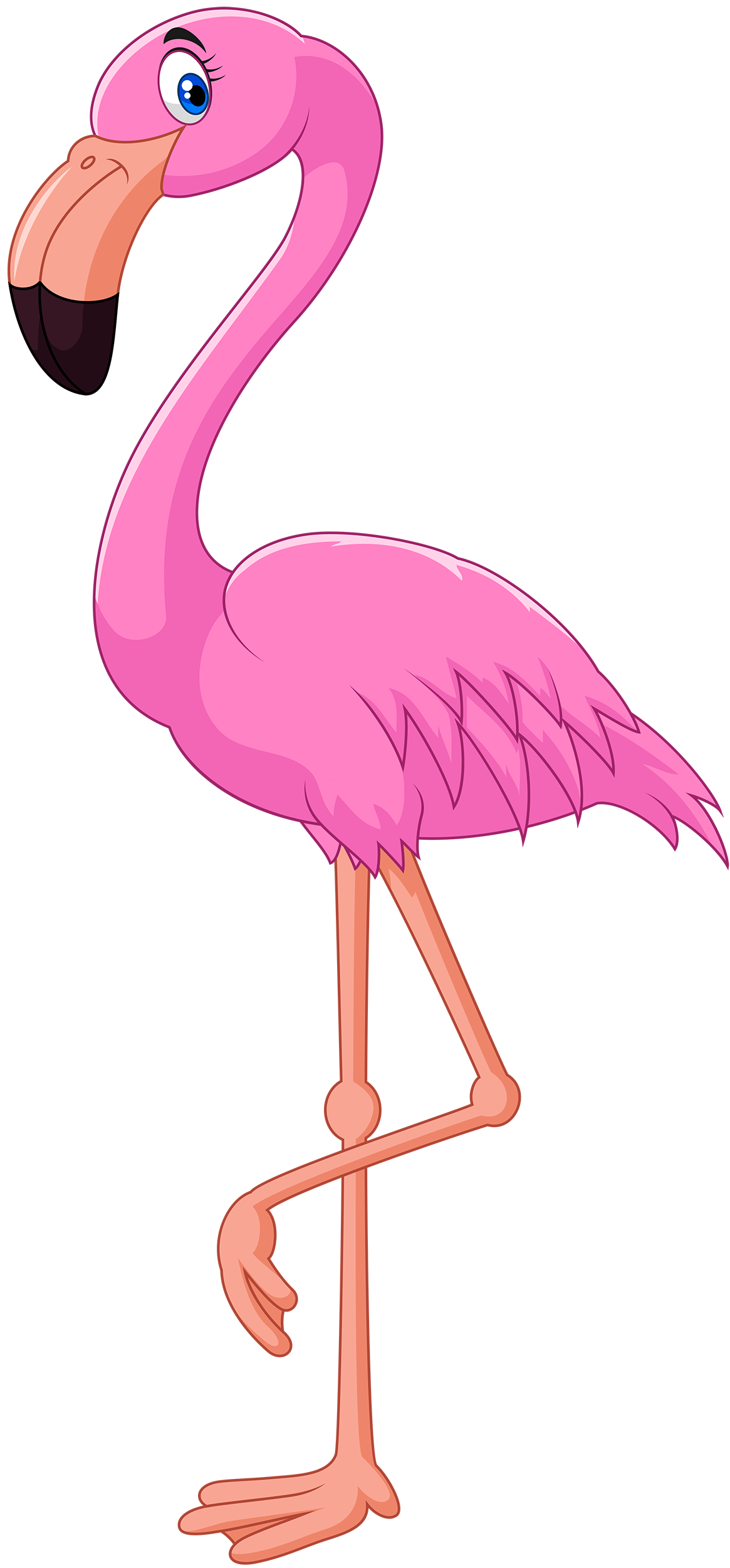 banner freeuse download Flamingo web theme pinterest. Pink clipart