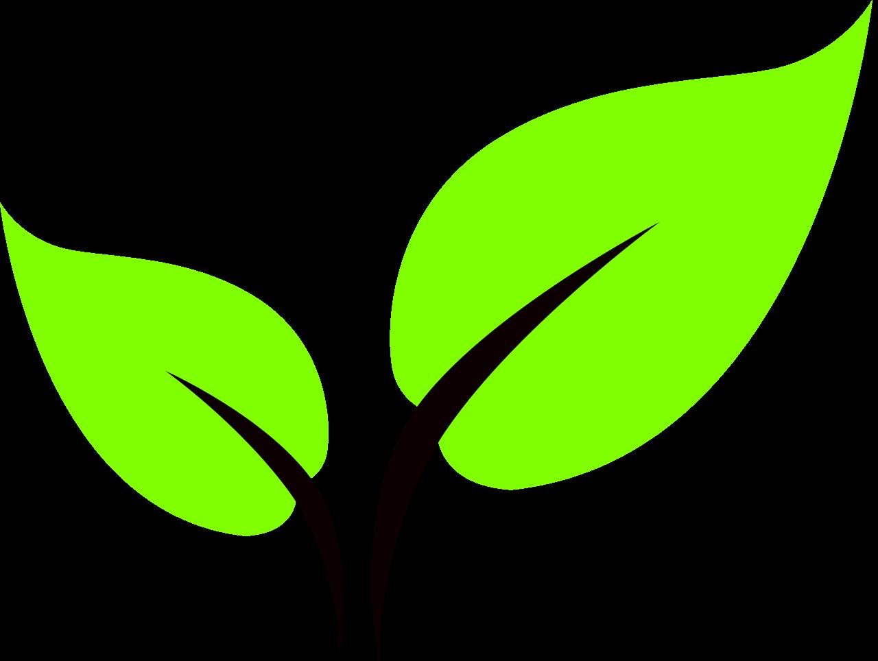 svg transparent stock curve vector leaf #111163618