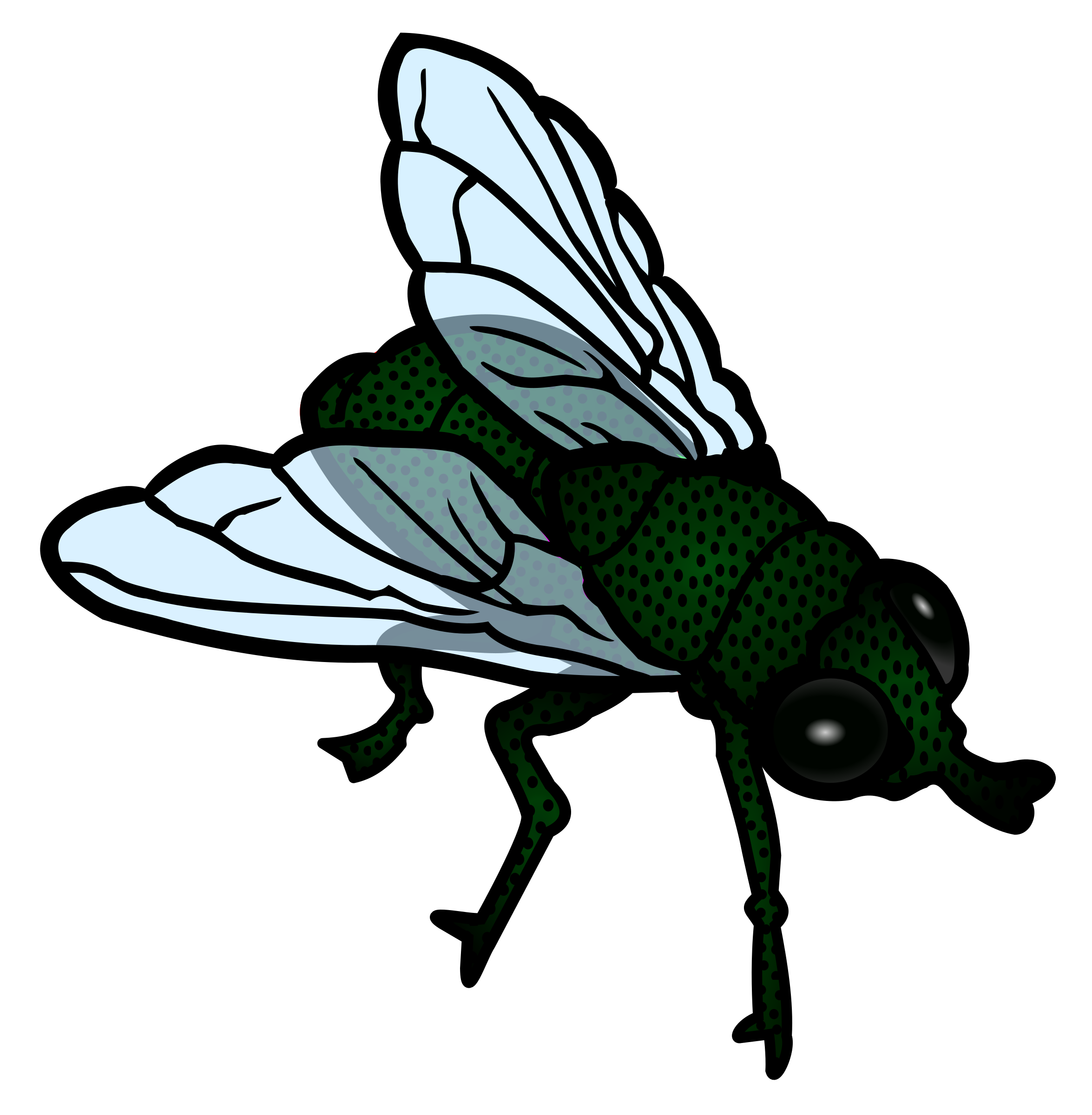 royalty free stock Clipart fly. Coloured big image png