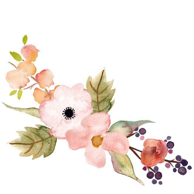 png free Floral clipart. Beautiful hand painted clip.