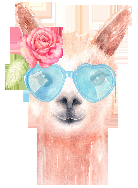 png royalty free stock Llama watercolor