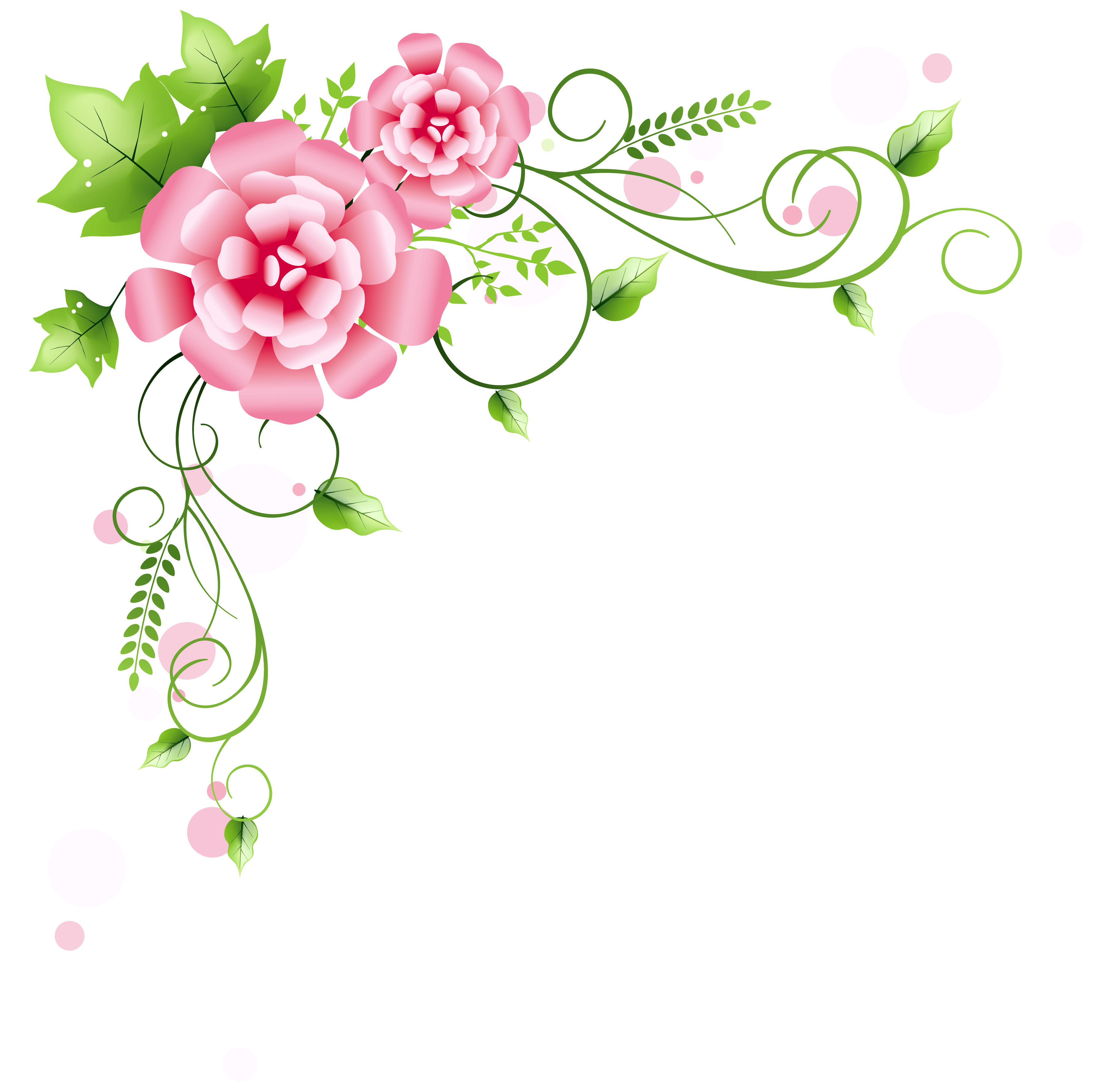 image library stock Peonies clipart floral accent. Corner decoration png picture