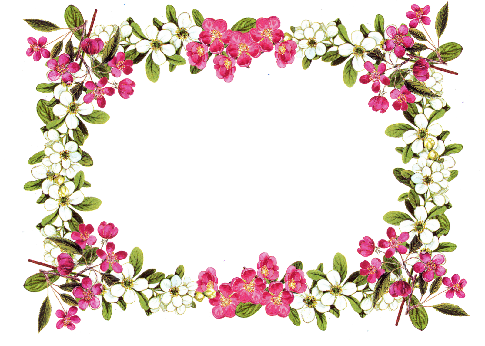 picture royalty free download Floral clipart. Free printable clip art