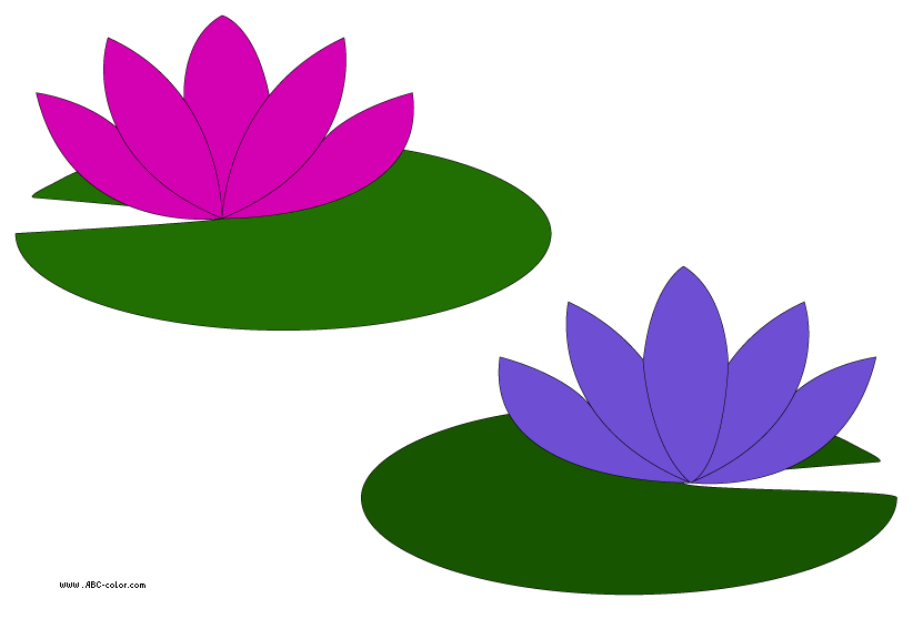 svg free library water lily art