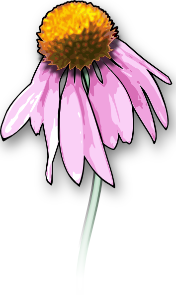 image free stock Dead Flower Clip Art at Clker