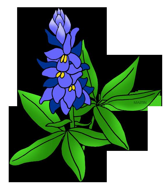 clip art royalty free Texas bluebonnet clipart. Flowers clip art by