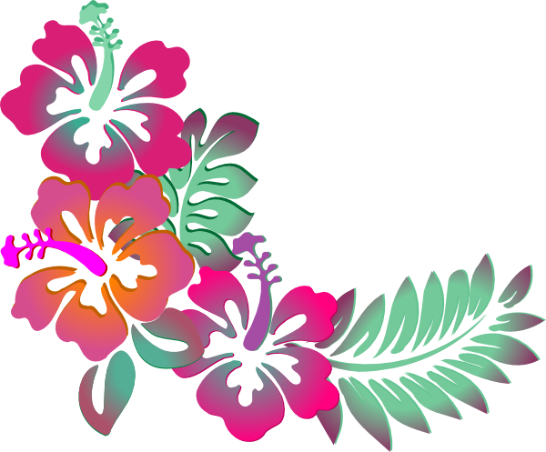 png black and white stock Colorful Floral Corner Borders Png Hibiscus corner clip art