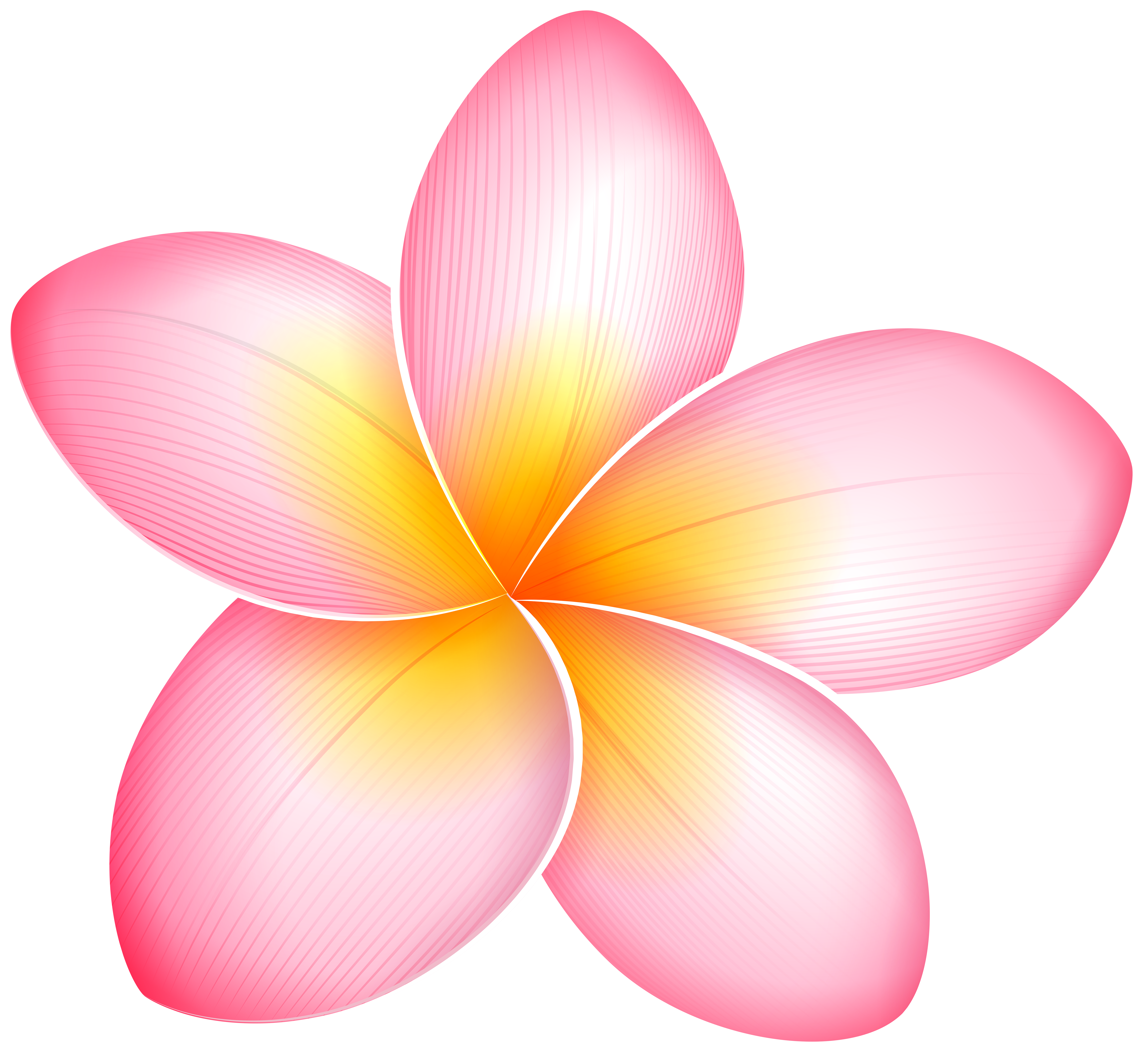 jpg Flowers clipart name. Pink exotic flower png