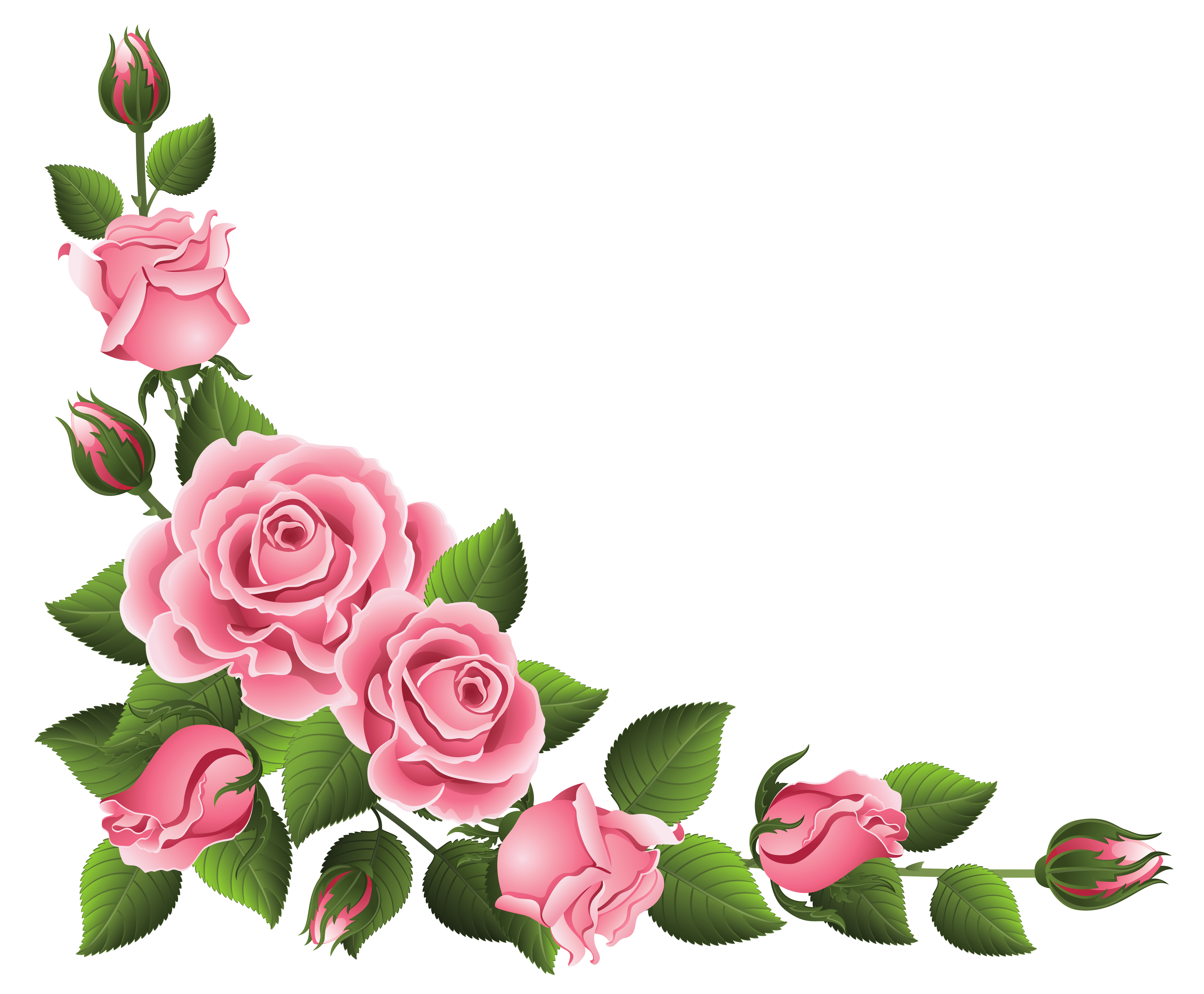 banner free library Corner Decoration with Roses PNG Clipart Picture