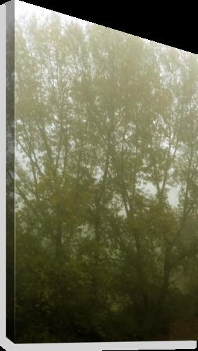 transparent download Photography Landscape