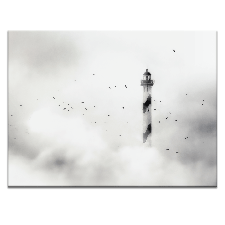 banner black and white Photographers Lane