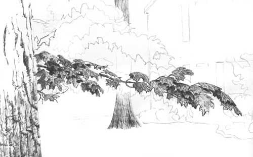 svg royalty free download Drawing Tree Foliage
