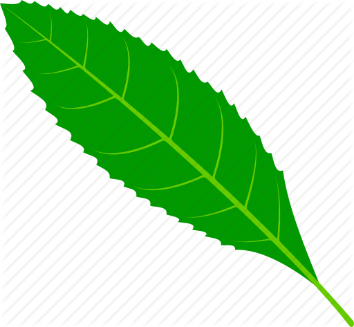 clip art royalty free download foliage vector plant #112935645