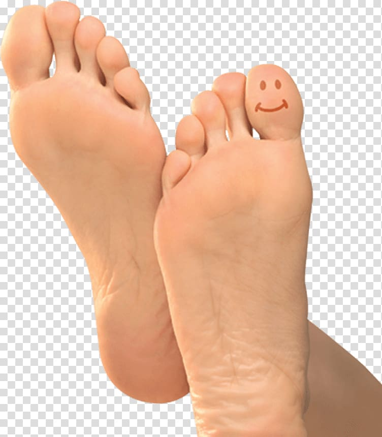 image free library Foot transparent. Leg toe background png