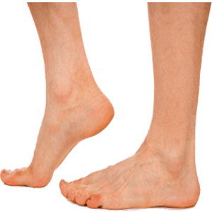 royalty free Feet background . Foot transparent