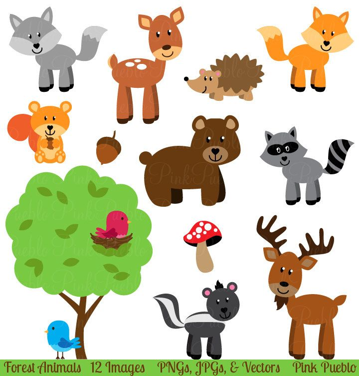 transparent Clip art animals woodland. Forest animal clipart